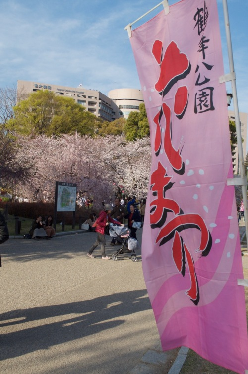 hanami2019blog - 5