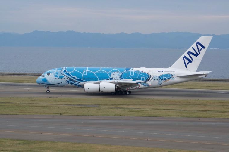 ANA380 - 3 (1)