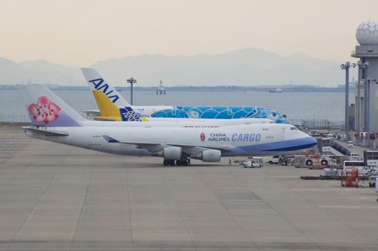 ANA380 - 7 (1)